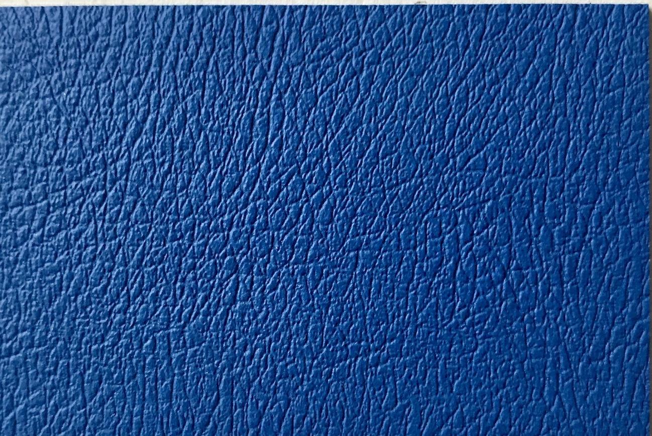 Apple skin blue